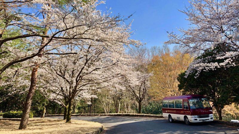 GEN-TENゴルフコースレッスンクラブバスと桜