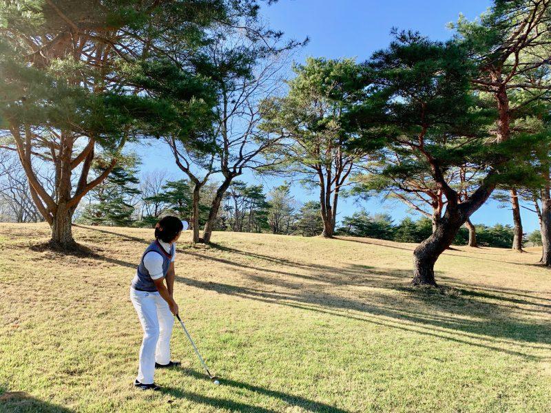 GEN-TENゴルフコースレッスントラブルショット木の上を狙う写真