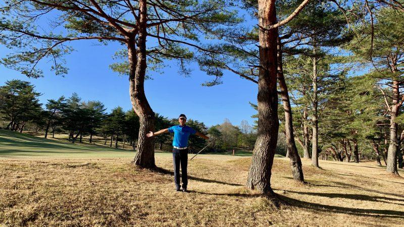 GEN-TENゴルフコースレッスントラブルショット木と木の間隔の写真