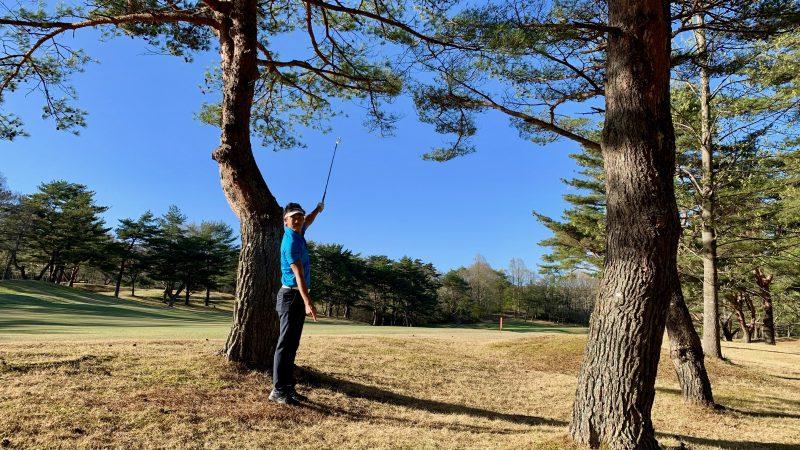 GEN-TENゴルフコースレッスントラブルショット枝の高さの写真