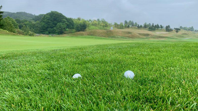 GEN-TENゴルフコースレッスンラフからのクラブ選択ラフとボールの写真