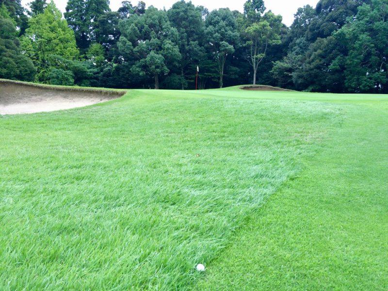 GEN-TENゴルフコースレッスンスコアアップショートゲーム左足上がりの写真